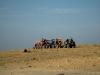 fuerteventura-dune-buggy