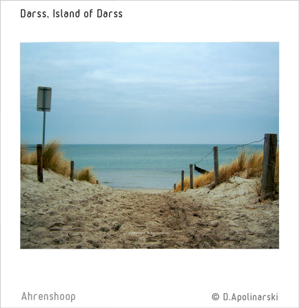 Darss Strand Uebergang